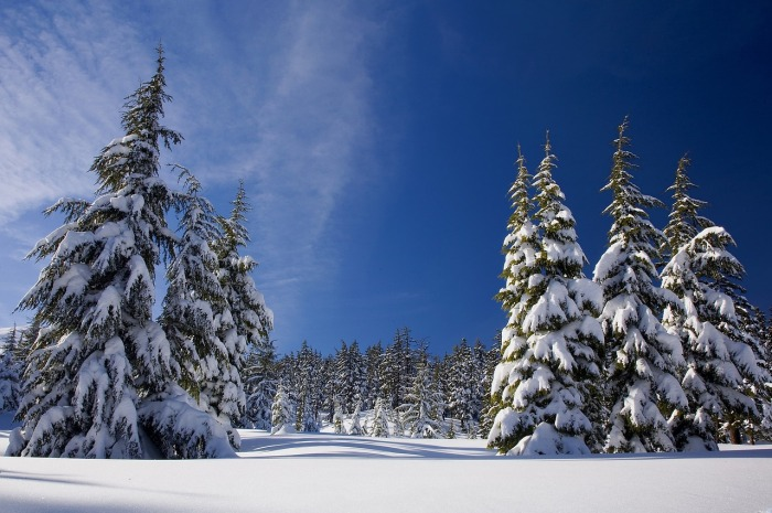 snow-1902052_1280